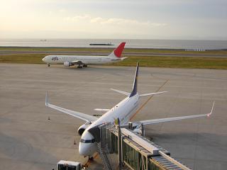 20081110-01.JPG